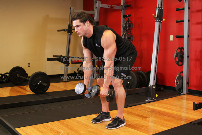 ท่าฝึก Bent Over Two Dumbbell Row