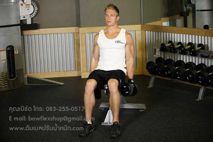 Seated-Dumbbell-Inner-Biceps-Curl-1